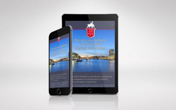 Trans Euro Finance Website
